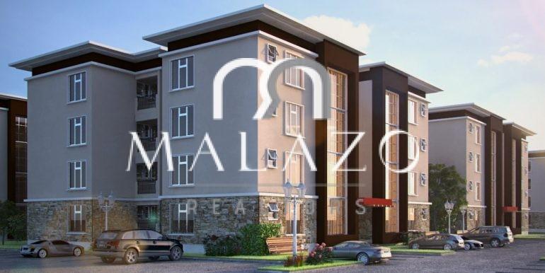 willow11-770x386 2