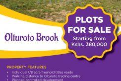 Olturoto Brook 1/8 acre plots